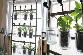 TURN A VEGETABLE RACK INTO A HERB GARDEN
